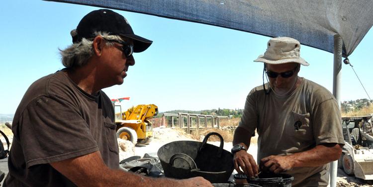 Examining Pottery crop
